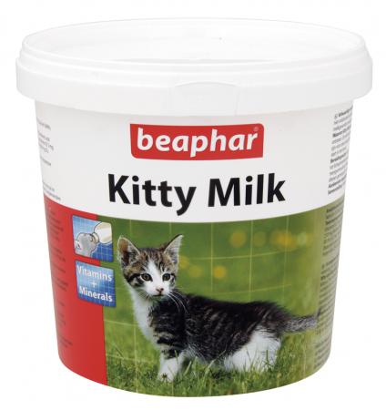 Kitty Milk - 500g - Dutch/French/English