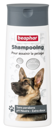 Bubbles Shampoo Anti-Dandruff - French