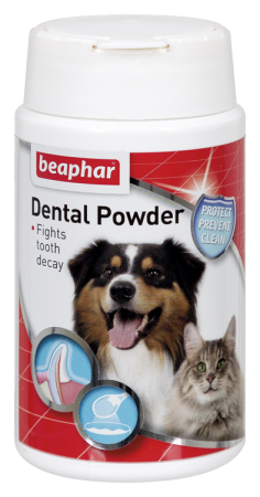 Dental Powder - English