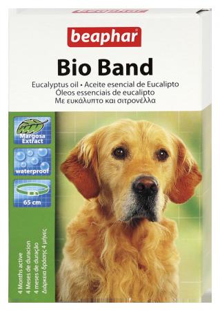 Bio Band