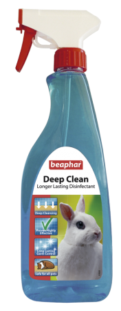 Deep Clean - English