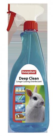 Deep Clean - English