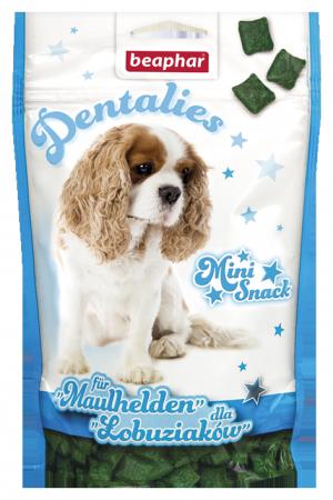 Dental Bits - German/Polish