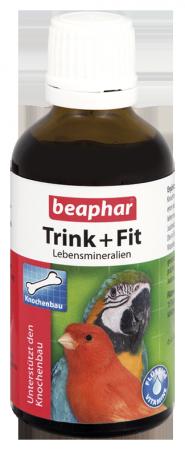 Drink & Fit - German