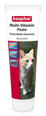 Duo-Active Paste - English/Spanish