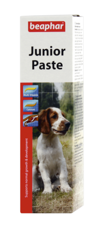 Junior Paste - English/Turkish