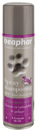 Premium Spray Shampooing - French