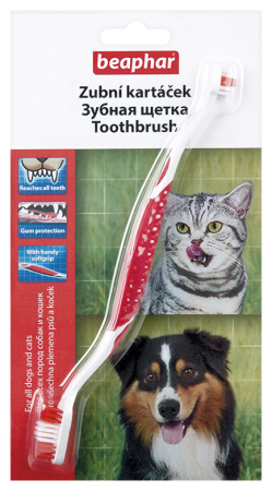 Toothbrush - English/Russian/Czech