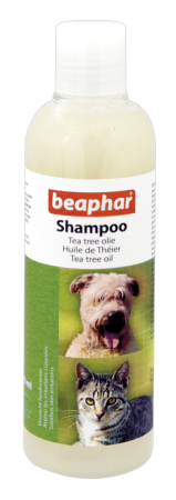 Tea Tree Shampoo - Dutch/French/English