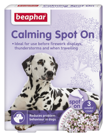 Calming Spot On for Dogs - English