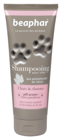 Premium Shampoo Kitten & Cat - French