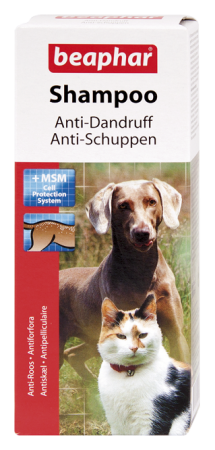 Shampoo Anti-Dandruff - English/German/Russian