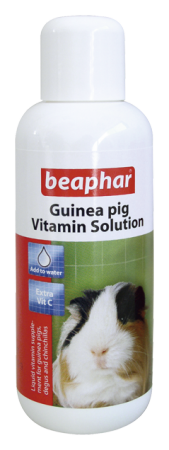Guinea Pig Vitamins - English