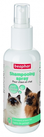 Dry Shampoo Spray - French
