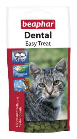Dental Easy Treat