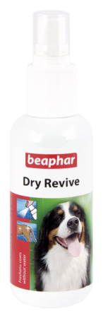 Dry Revive Spray - English