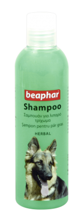 Shampoo Herbal: Greasy Coat - English/Romanian