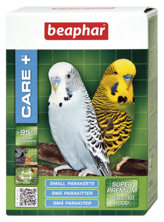 CARE+ Small Parakeets - Dutch/French/English/German/Spanish