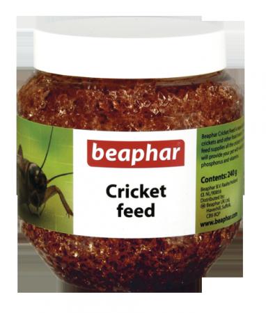 Cricket Feed - 240g - English