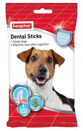 Dental Sticks for Small Dogs - English