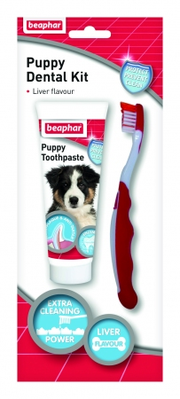 Puppy Dental Kit - English