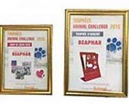 Beaphar récompensé pour ses qualités de fabricant