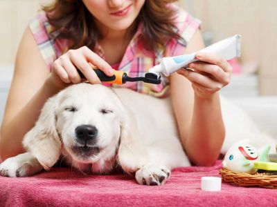 Musher a testé le Spray dentifrice