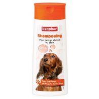 Shampooing pour chien pelage abricot ou brun