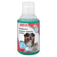 Solution haleine fraîche pour chien et chat