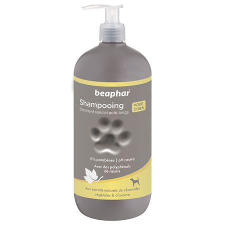 Premium Shampoo 2-In-1 for Long Hair - 750ml - French
