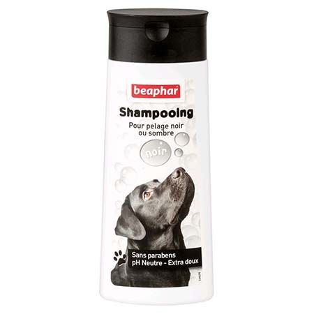 shampooing chien pelage noir