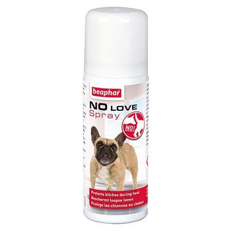 spray répulsif chien période chaleur