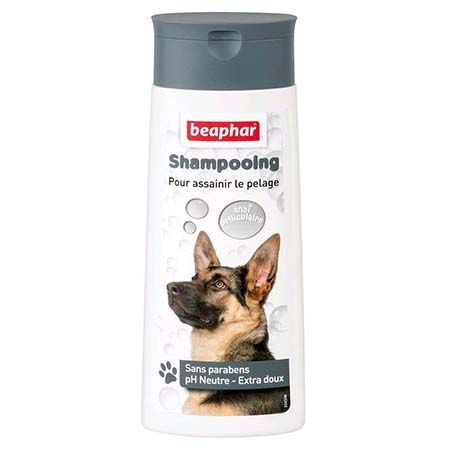 Beaphar shampooing antipelliculaire