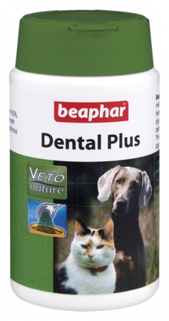 Dental Powder - French
