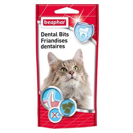 friandises dents chat