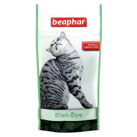 friandises hygiène intestinale chat