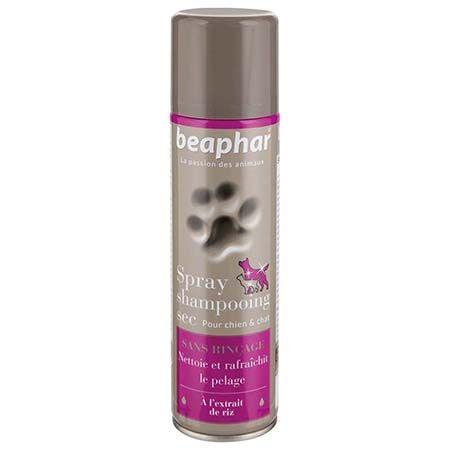 shampooing sans rinçage chien