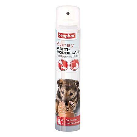 anti-mordillage chien
