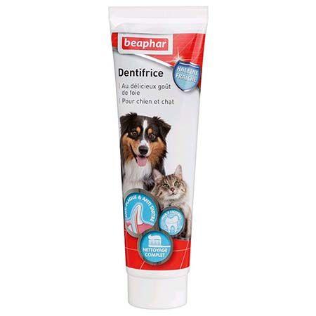 dentifrice chien et chat