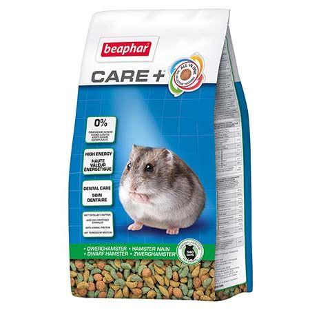 alimentation hamster nain