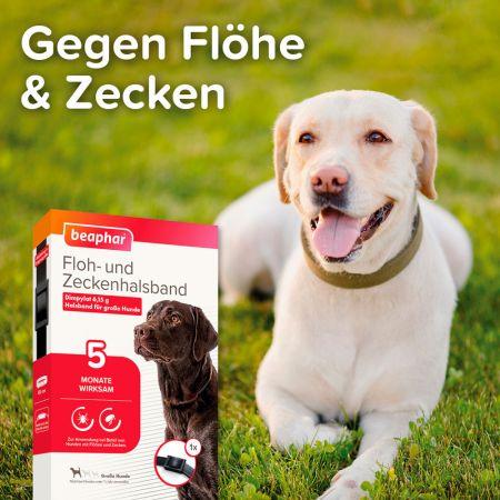 Gegen Flöhe & Zecken