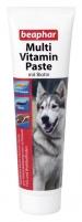 Multi Vitamin Paste Hund