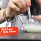 Milch für Welpen (Video)