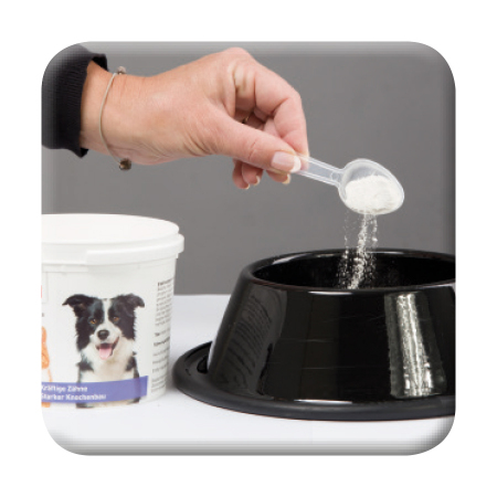 Kalzium forte - Anwendung