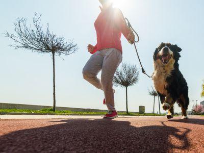 Hardlopen met je hond: 7 tips