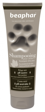 Premium Shampoo Black Coat - 250ml - Polish