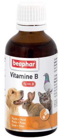 Vitamin B Complex 50ml - krople, zestaw witamin gr. B
