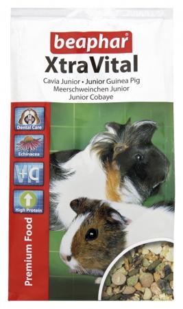 XtraVital Guinea Pig Junior 500g -  karma Premium dla młodych świnek morskich