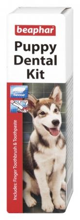 Puppy Dental Kit - zestaw do nauki mycia zębów u szczeniąt
