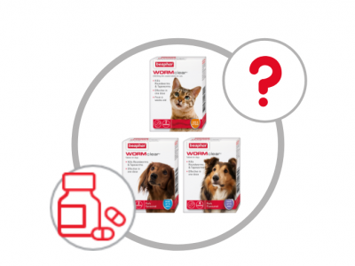 Choosing the right wormer for your cat or dog